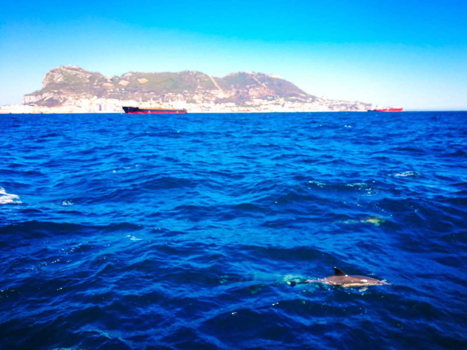 23-jun-2019-blogueros-espaoles-de-viajes-visitan-el-pen_48114498643_o