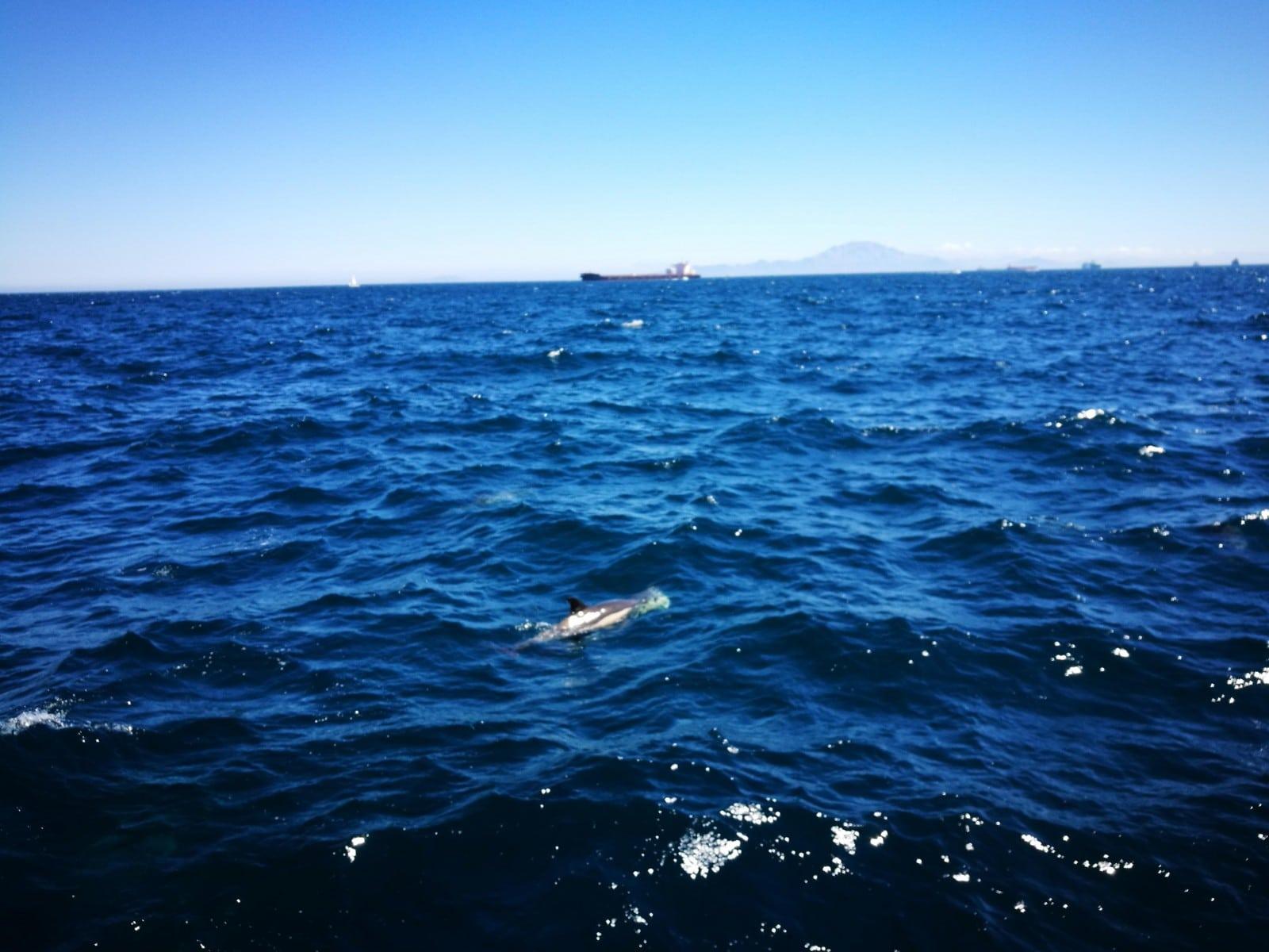 23-jun-2019-blogueros-espaoles-de-viajes-visitan-el-pen_48114554882_o