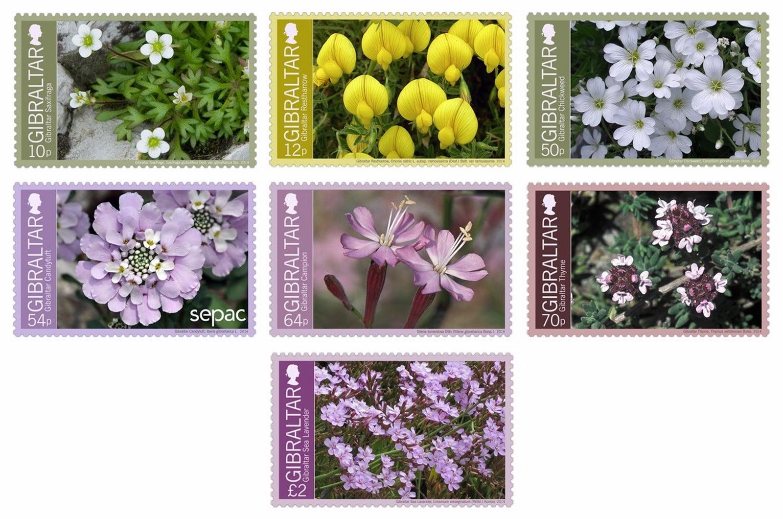 2014-Endemic-2014-Flowers