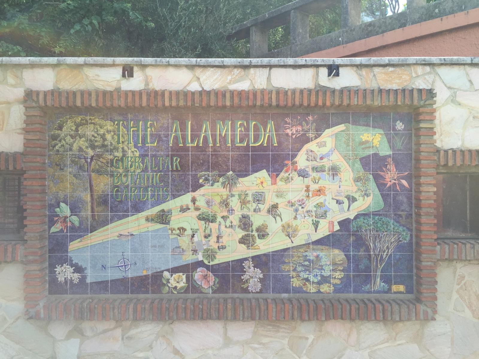 Alameda-13