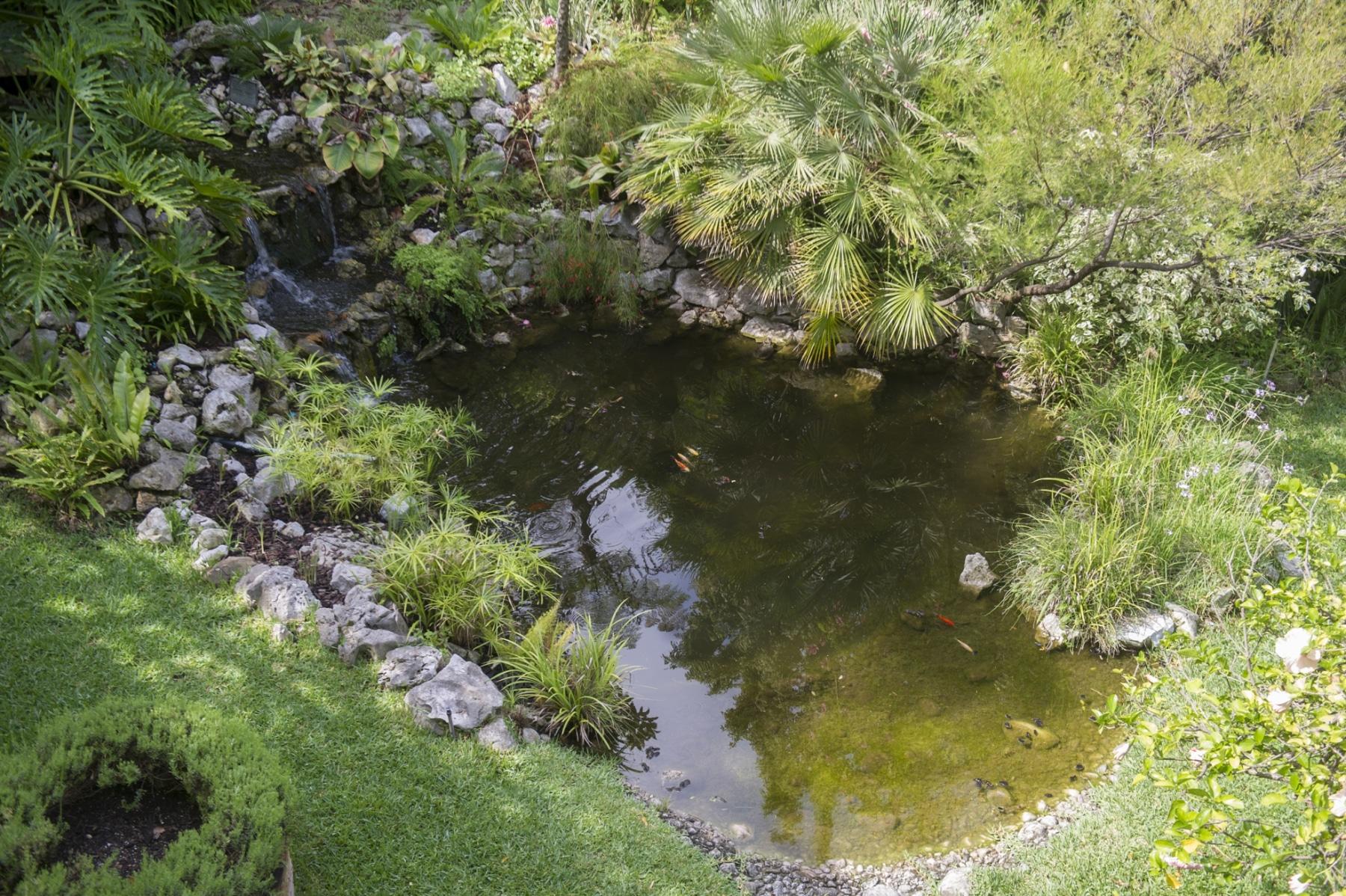 alameda-gardens-2_38736726785_o