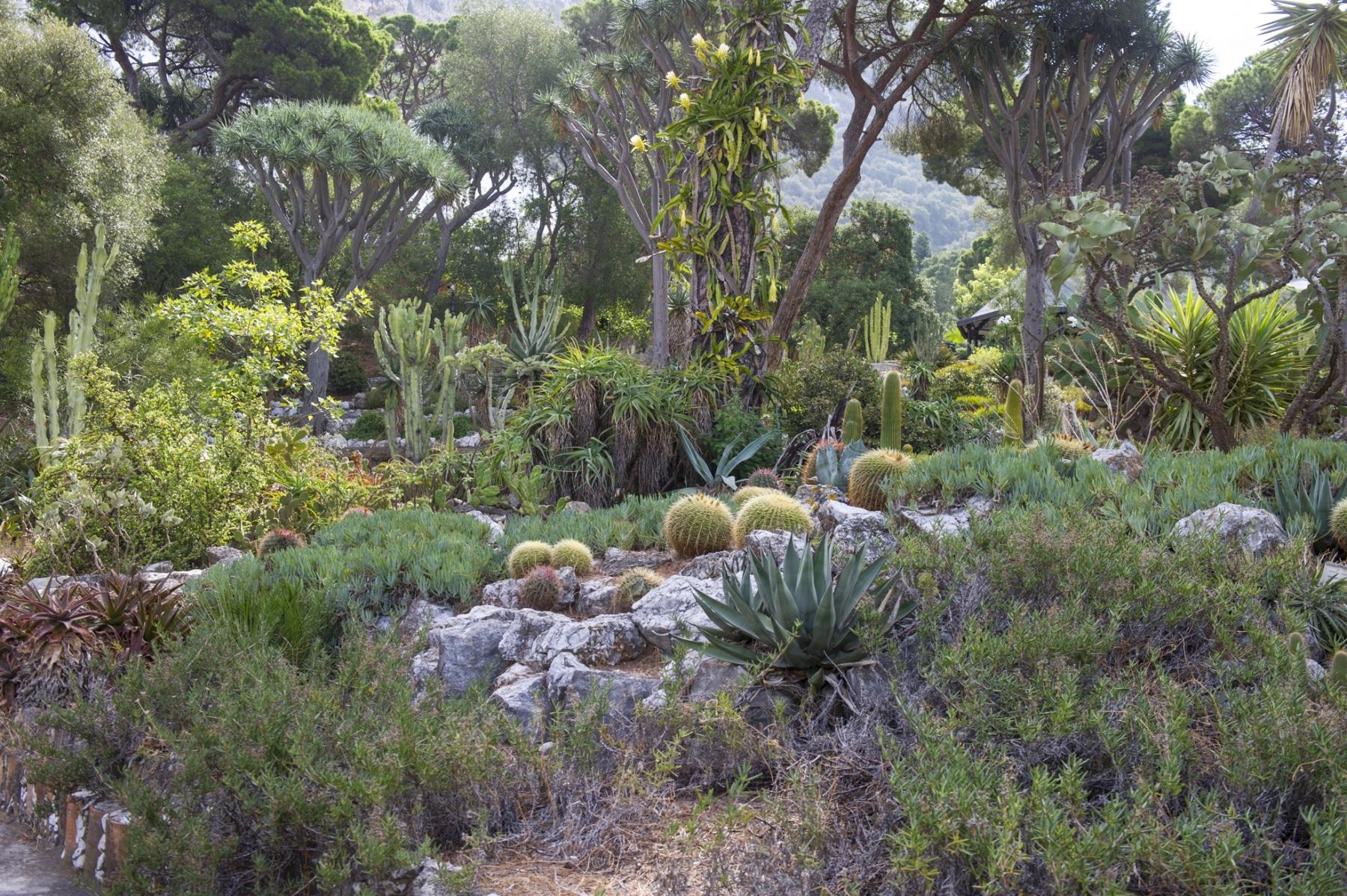 alameda-gardens-4_39603339022_o