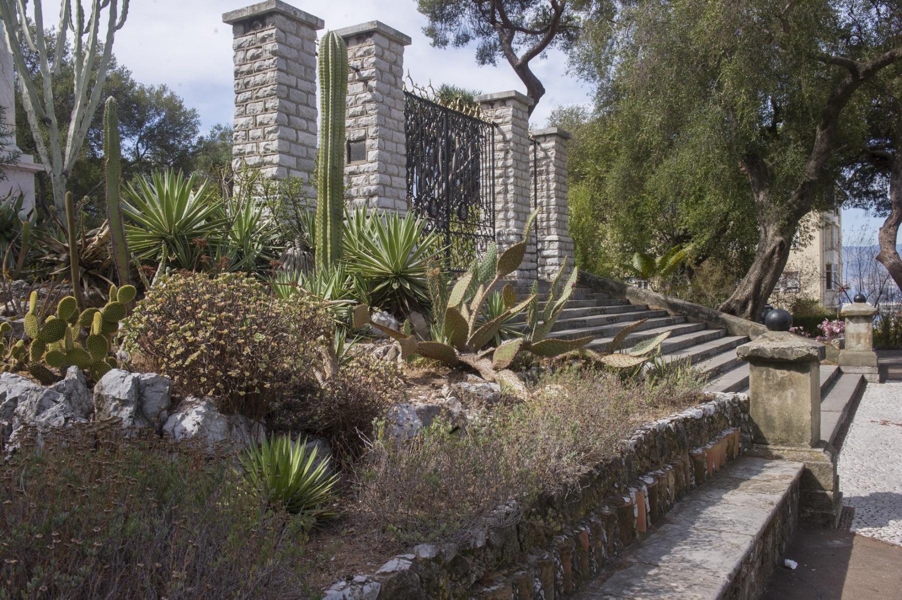 alameda-gardens-7_39633174641_o