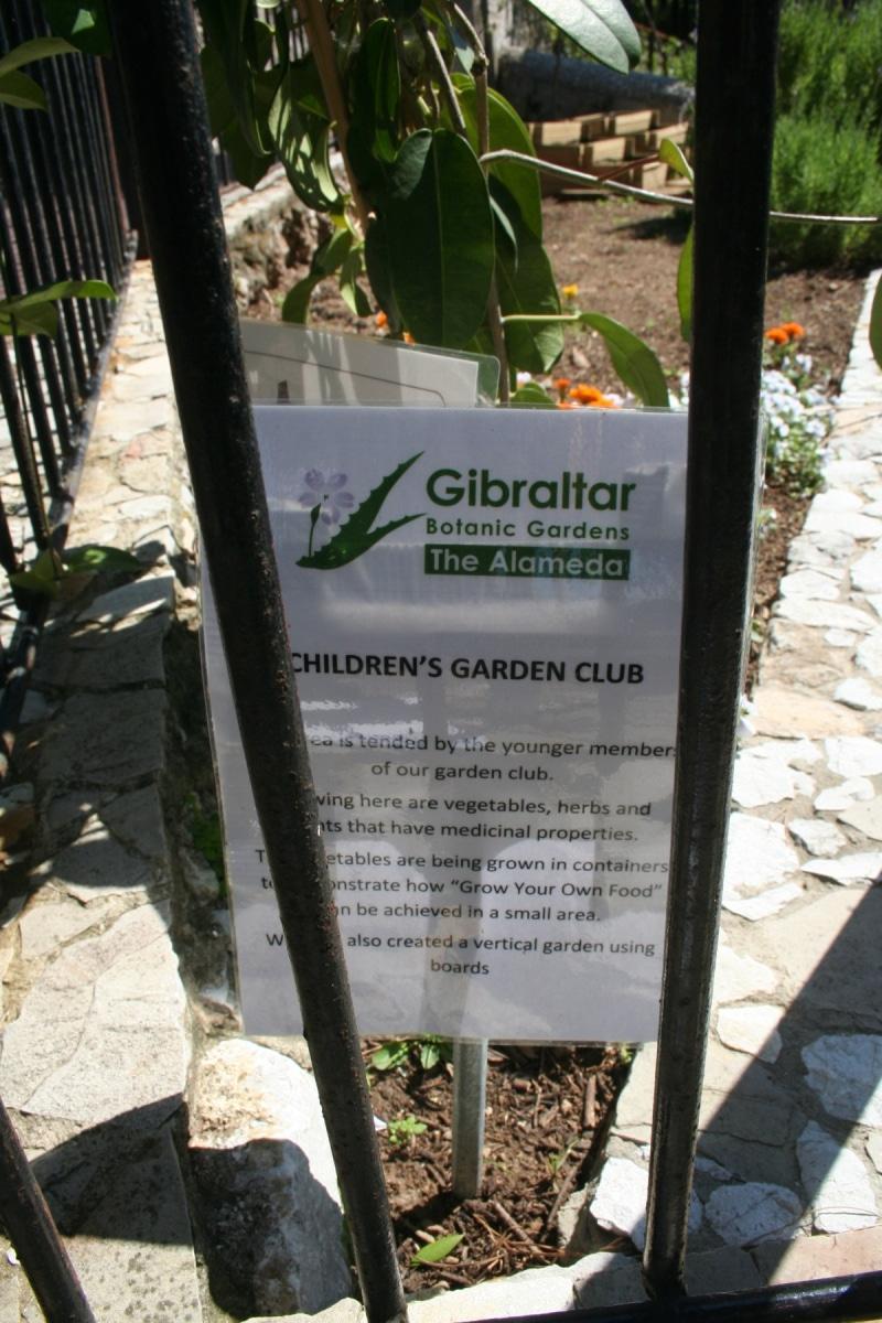 15-de-abril-2016-jardines-de-la-alameda-de-gibraltar-10_26440899855_o