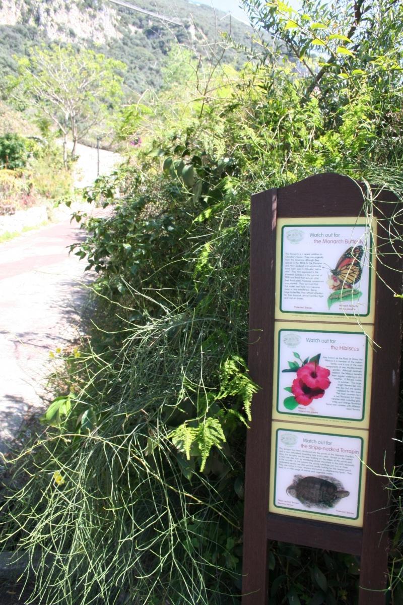 15-de-abril-2016-jardines-de-la-alameda-de-gibraltar-12_25838070013_o