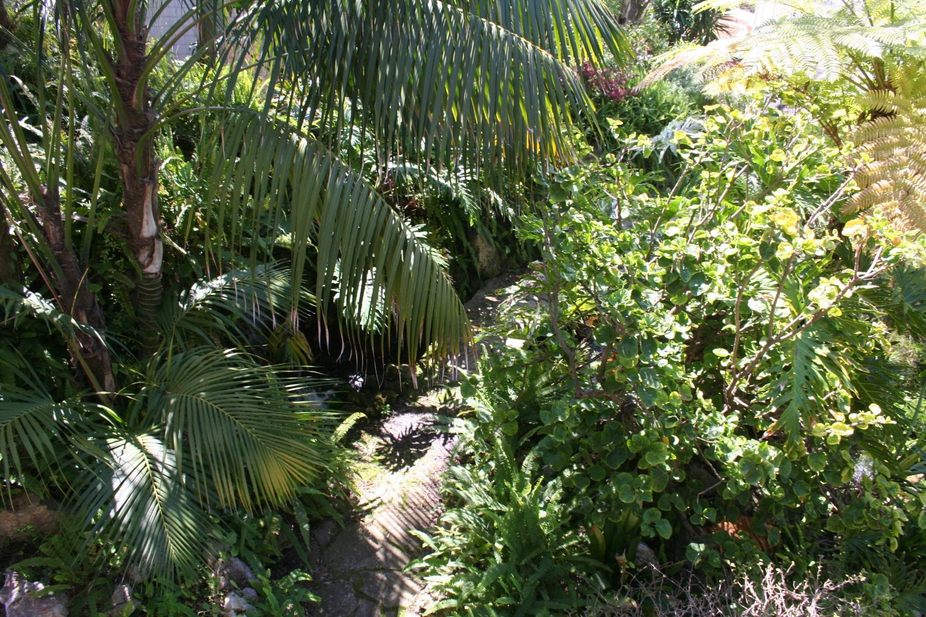 15-de-abril-2016-jardines-de-la-alameda-de-gibraltar-4_26168075250_o