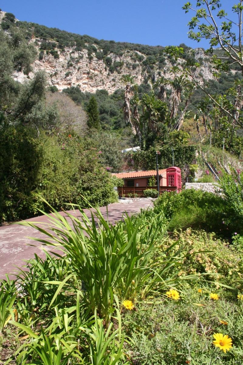 15-de-abril-2016-jardines-de-la-alameda-de-gibraltar-52_26414888406_o