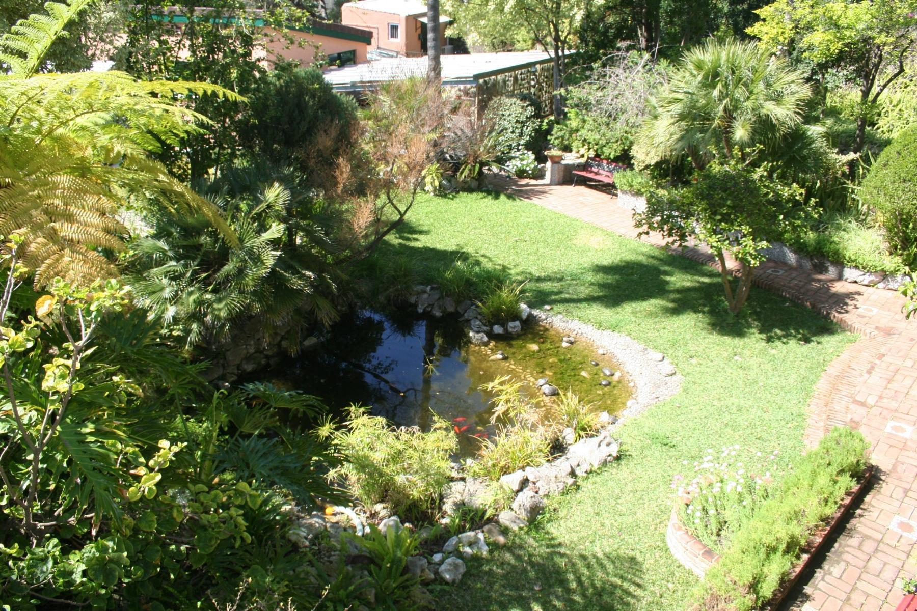 15-de-abril-2016-jardines-de-la-alameda-de-gibraltar-6_26168070490_o
