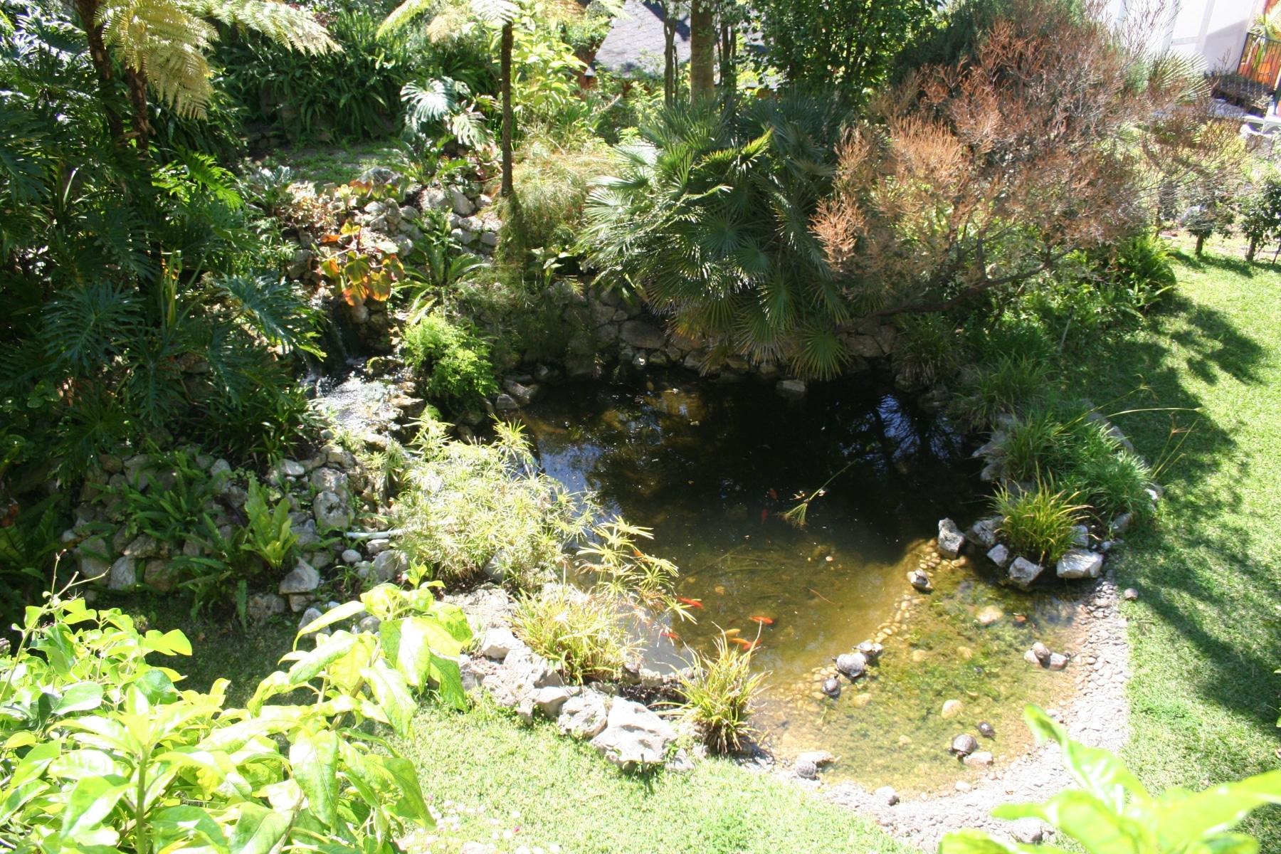 15-de-abril-2016-jardines-de-la-alameda-de-gibraltar-9_25836044814_o