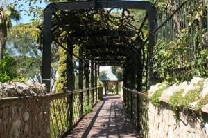 160415 Jardines de la Alameda de Gibraltar