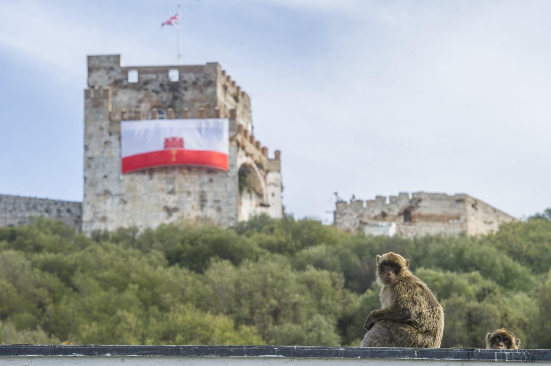 turismo-en-gibraltar-092015-703_22122710503_o